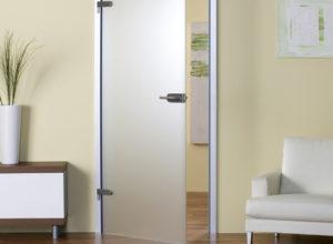 стеклянная дверь по типу 1